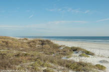 Colony Reef condos are in the center of Anastasia Island with St. Augustine Beach to the north and Crescent Beach to the south.